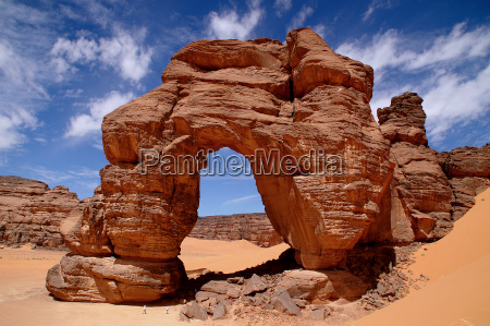 arch rock fozzigaren