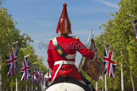 mounted soldier of the household cavalry