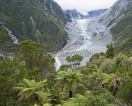 view to the fox glacier from