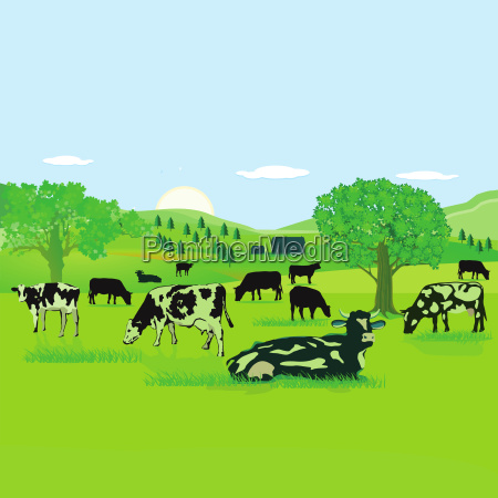 food aliment environment enviroment bucolic animal